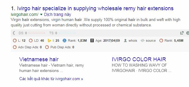 remy hair company